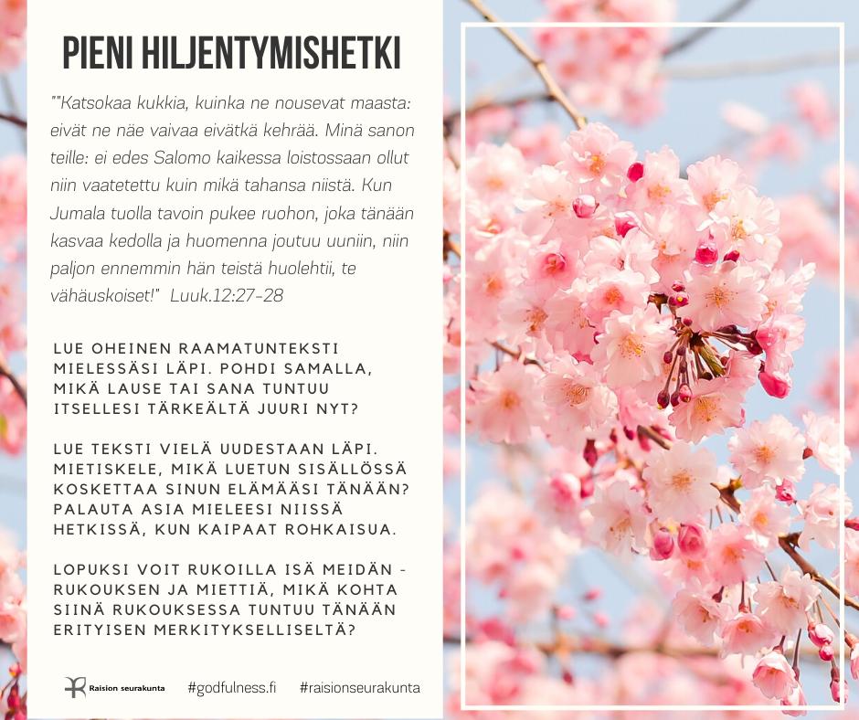 Kukkivan kirsikkapuu-kuvan päällä Pienen hiljentymishetken ohje.