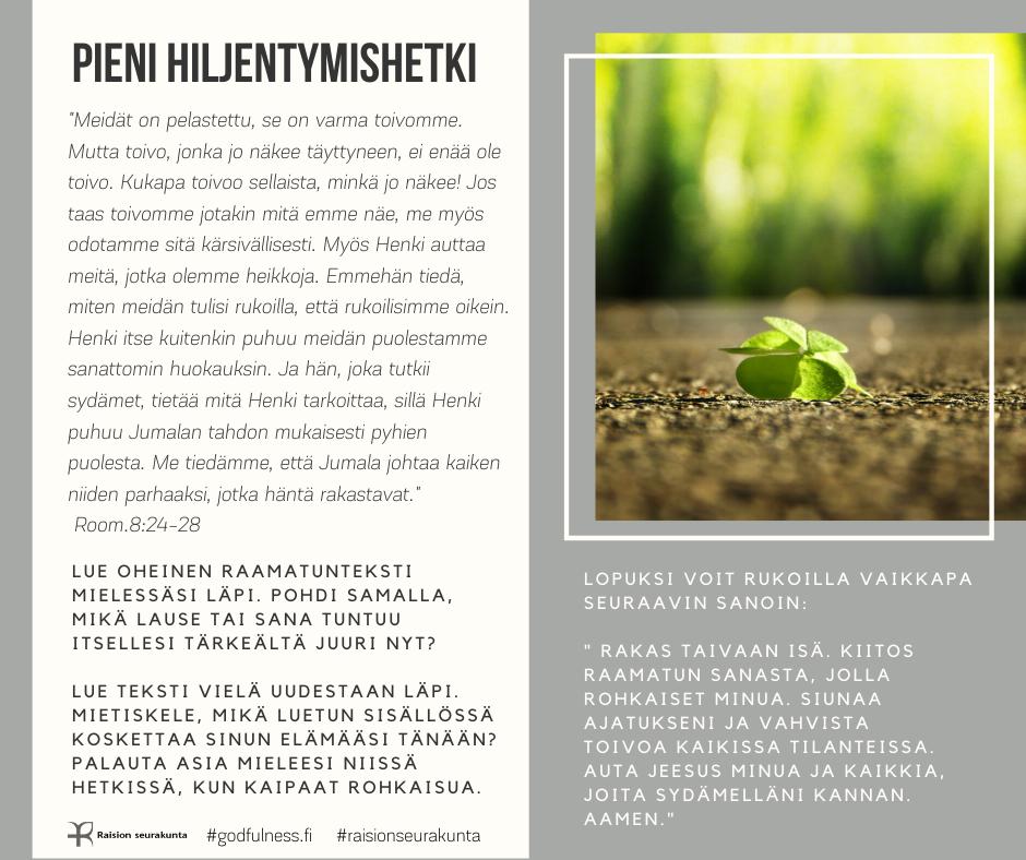 Ruskeasta maasta pilkistävä pieni vihreä taimi.